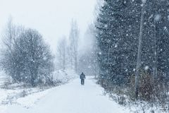Snowy day in the park, outgoing man. Finland royalty free stock images