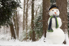 Snowy day and snowman. Large snowman standing in the park while it's snowing Royalty Free Stock Images
