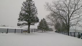 Snowy Day. A winter wonderland in rural Pennsylvania Stock Photos