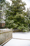 Snowy Deck and Yard with Magnolia Royalty Free Stock Photography