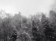 Snowy dennoch schönes Österreich lizenzfreies stockbild