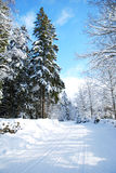 Snowy dirt road Royalty Free Stock Photography