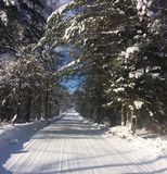 Snowy Dirt Road in Vermont. During winter with blue sky and evergreens Royalty Free Stock Image