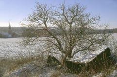 Snowy-Dorf Lizenzfreie Stockfotos