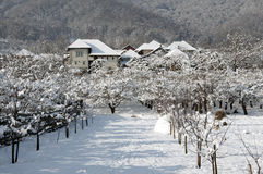 Snowy-Dorfhotel im Winterobstgarten Stockfotos