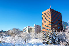 Snowy Downtown Portland Stock Photography