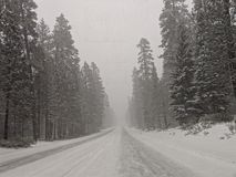 Snowy drive royalty free stock photos