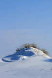 Snowy dunes Royalty Free Stock Photos