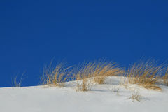 Snowy dunes Royalty Free Stock Photography