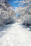 Snowy-Durchlauf Stockfotos