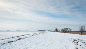 Snowy Dutch landscape Royalty Free Stock Photography