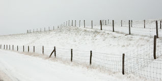 A snowy Dutch landscape with fences Stock Image