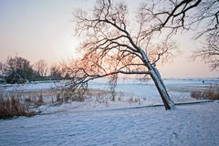Snowy dutch landscape in winter in the Netherlands Royalty Free Stock Photos