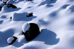 The snowy earth Royalty Free Stock Photos