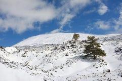 Snowy Etna Park, Sizilien lizenzfreie stockbilder