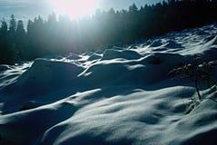 Snowy-Feld Lizenzfreies Stockfoto