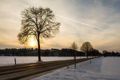 Snowy-Feld Lizenzfreie Stockfotografie