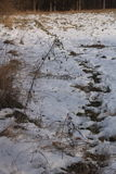 Snowy-Feld Stockfoto