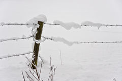 Free Snowy Fence Stock Photos - 12755143