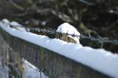 Snowy fence. With barbed wire Royalty Free Stock Photo