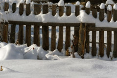 Snowy fence in the countryside. The snow sparkles in the sun. Ru Royalty Free Stock Image