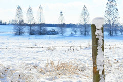Snowy fence line Royalty Free Stock Photos