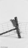 Snowy Fence Line Stock Photography