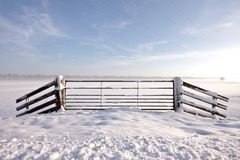 Snowy fence in the Netherlands Stock Photography