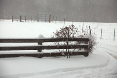 Snowy Fence Stock Image