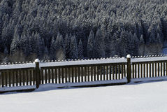Snowy fence and trees. Fence and spruce trees in winter Royalty Free Stock Images