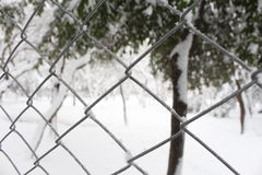 Snowy Fence. In winter snow park Stock Photos