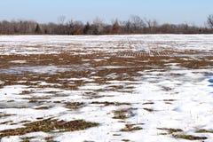 Snowy field Stock Photography