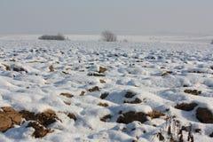 Snowy field in Aisne Stock Photos
