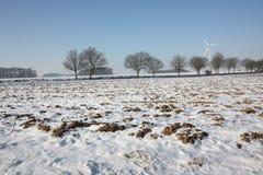 Snowy field Royalty Free Stock Photos