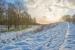 Snowy field along trees at sunrise Stock Photography