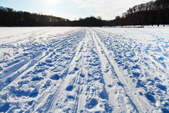 Snowy field in cold winter day Royalty Free Stock Photo
