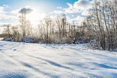 Snowy field and forest during the sunset of the bright sun, blue sky with clouds, winter landscape. Of wildlife Stock Photo
