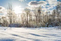 Snowy field and forest during the sunset of the bright sun, blue sky with clouds, winter landscape. Of wildlife Stock Images