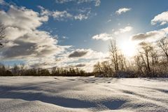 Snowy field and forest during the sunset of the bright sun, blue sky with clouds, winter landscape. Of wildlife Royalty Free Stock Photos