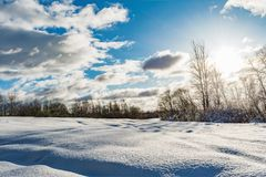 Snowy field and forest during the sunset of the bright sun, blue sky with clouds, winter landscape. Of wildlife Royalty Free Stock Images