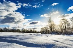 Snowy field and forest during the sunset of the bright sun, blue sky with clouds, winter landscape. Of wildlife Stock Photos