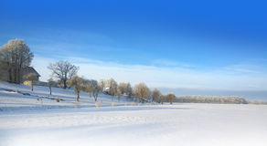 Snowy field Stock Photos