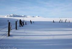 Snowy fields Royalty Free Stock Photo