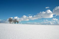 Snowy fields on a sunny winter day royalty free stock photography