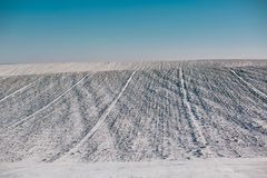 Snowy fields under a blue sky Stock Photo
