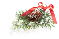 Snowy Fir Branch Stock Images