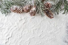 Snowy fir branch and pine cones on winter background. Snow background with snowy fir branch and pine cones Stock Images