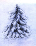 Snowy fir sketch Royalty Free Stock Image