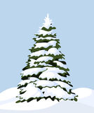 Snowy fir-tree. Illustration of winter landscape with snowy fir-tree Royalty Free Stock Photo