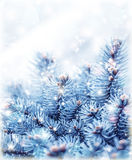 Snowy fir tree background Royalty Free Stock Images